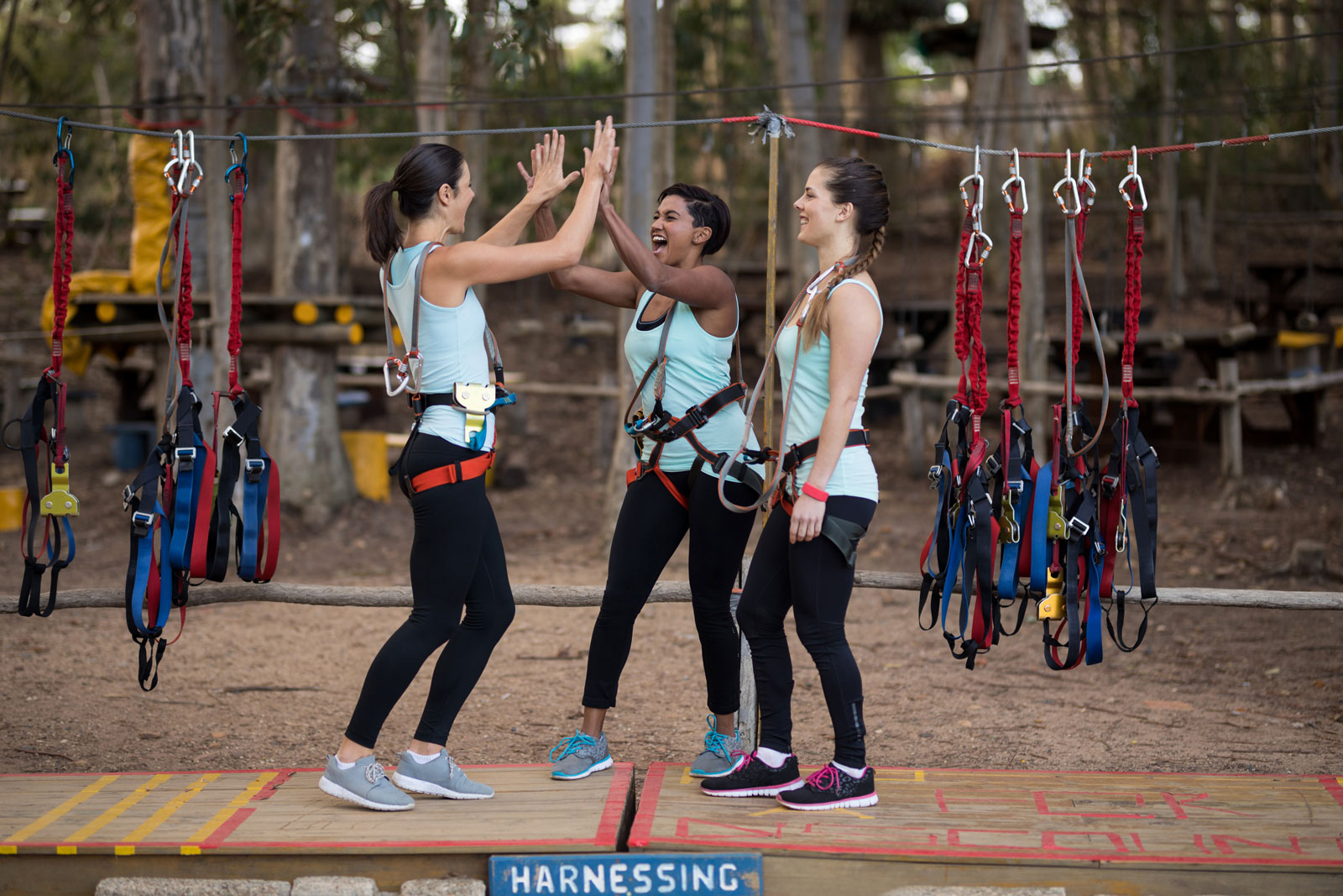 Looking for an Exciting Group Activity? Consider Zip Lining