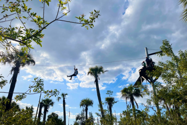 Person zip lining over trees